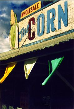 wholesale, the corn palace. by acameraobscura