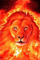 fire lion  (photoediter) by 9madgirl9