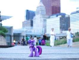 Tiny Twi in Lurie Garden by statoose