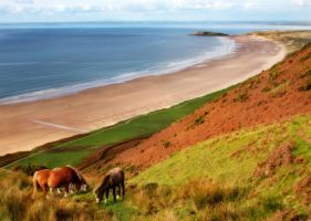 Rhossili Beach, Gower by nectar666
