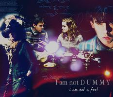 I am not a fool by MarySeverus