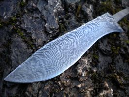 Recurve blade by hellize