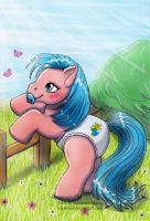 My little Pony - 2 Aceo Maxi by Vani-Fox
