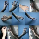Hand 1 by ShiStock