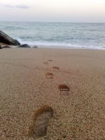 foot steps to the sea by Amyvanluik