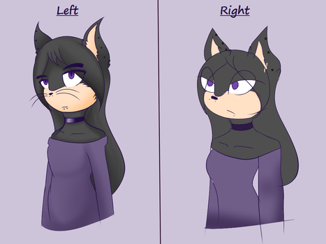 The Left Hand Right Hand Challenge by IreneAmpora