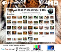 Wallpaper Bengal Tiger Pack HD by CaHilART