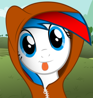 Flipside with a Hoodie by FlipsideEquis