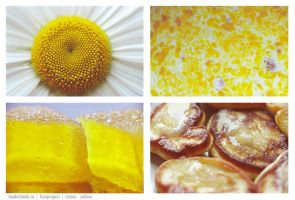 Colors: yellow by tanusha