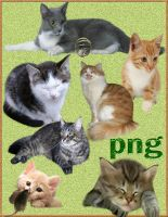 cats 1852 png by roula33