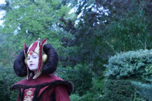 Queen Amidala ~ Wise Majesty at Theed by Kaori-prod