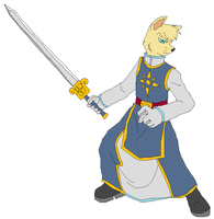 The Paladin by Metal-Kitty