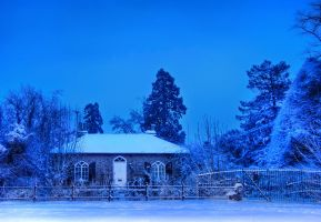 Early Blue Morning by Pipera