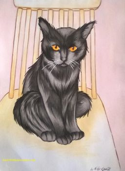 Sooty by kael1030