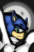 Sonic at midnight - 11-10-13 by Nei-Ning