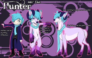 Hunter Reference 2013 by FateHound