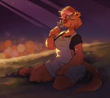 Solstice by DAND-E