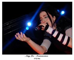 Amy Lee - Evanescence by heartrender