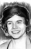 Harry Styles by flying-muffin
