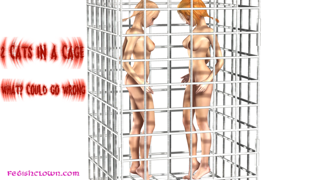 Two Cats In a Cage by westcat