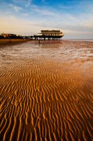 Lincolnshire Beach by taffmeister