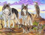 Mexican Wolf Pack by 8TwilightAngel8