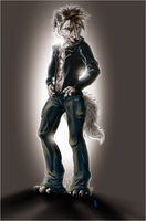 .:Spotlight:. by WhiteSpiritWolf
