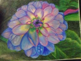 zinnia by RondaRussell