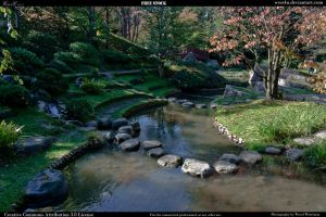 Japanese Garden 6 by Wess4u