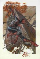 SPIDEY IN LUCCA LITHO FINAL by simonebianchi