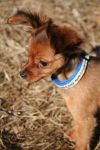 Somewhere Else by HiawathaPhoto