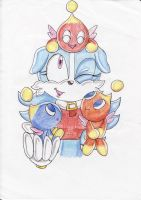 Sky and the Chao by ChaosAngel5