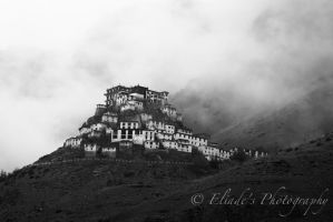Ki Monastery - Spiti Valley - Himalayas - India by EliadePhotography