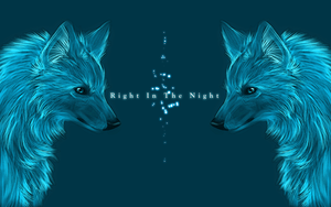 .:Right in the Night:. by WhiteSpiritWolf