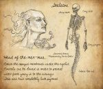Head and skeleton of a merman by HarrietKaarre