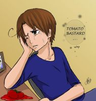 Sad romano - final version by yuki-natsumi