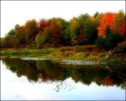 Reflections of Autumn by livinglove99