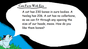 Cat Facts With Eira ll 2 by AriaSnow