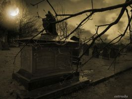Cemetery Night by Estruda