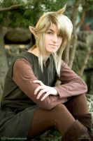 Old school Link cosplay by pikminlink