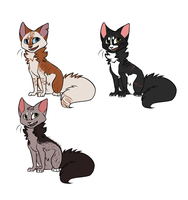 .: Cat Adoptables :. 1 LEFT! by xchemicalkidsx