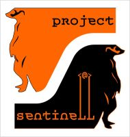 Project Sentinell by M41C0N