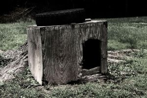 Old Dog House by Ithaedral