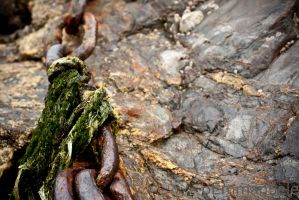 The Old Chain - Day 85 - 26/03/13. by oEmmanuele