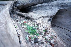 Driftwood on the Glass Beach by ABayShindel