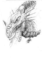 Dragon head sketch by ARMORMAN