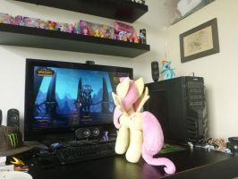 day 1.5 - Fluttershy check out my PC by verolesh
