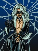 Black Cat Colors by CdubbArt