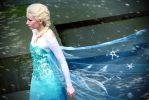 Elsa Cosplay by DarthJader11