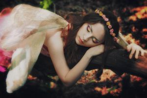 Sleeping Butterfly by iomaSaty